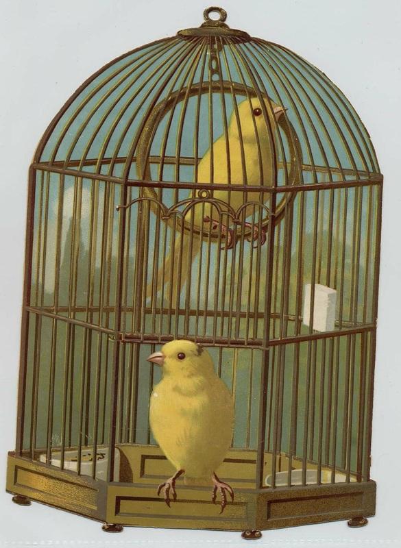 Vintage okra clipart clip art transparent stock Birds - Artsy Bee Digital Images clip art transparent stock