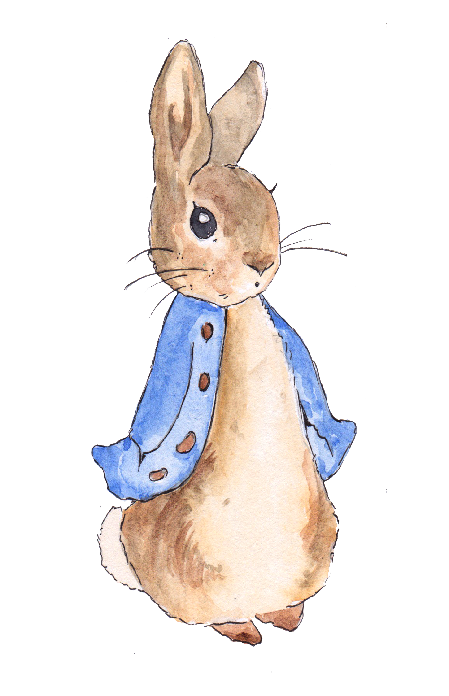 Watercolor laundry linen clipart image library stock Peter Rabbit | Party Themes in 2019 | Peter rabbit birthday ... image library stock