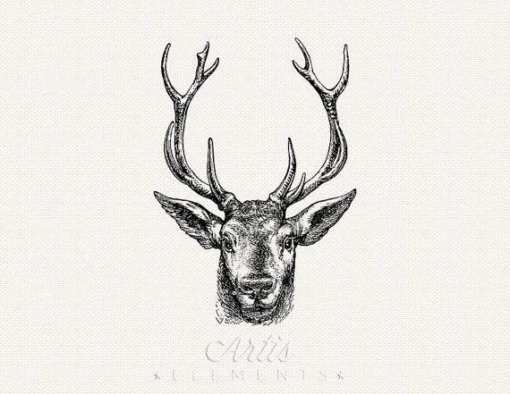 Vintage reindeer head clipart banner black and white download Stag, Buck, Elk, Deer Head with Antlers - Digital Download ... banner black and white download