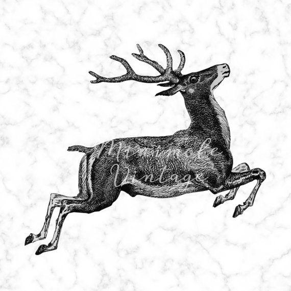 Vintage reindeer head clipart clip black and white Vintage Reindeer Clipart Christmas Digital Image Printable ... clip black and white