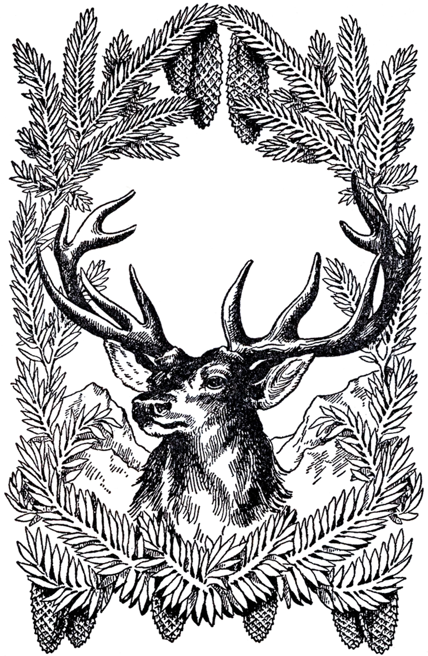 Vintage reindeer head clipart jpg freeuse download 12+ Deer and Antlers Clipart! - The Graphics Fairy jpg freeuse download