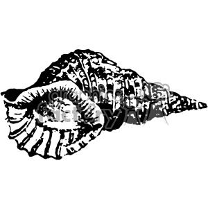 Vintage shell clipart clip library vintage distressed seashell GF vector design vintage 1900 vector art GF  clipart. Royalty-free clipart # 402456 clip library