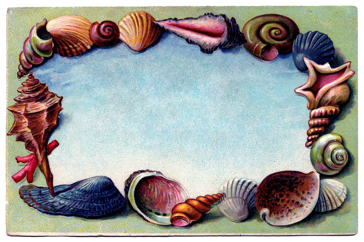 Vintage shell clipart clip art freeuse download Free Wedding Shells Cliparts, Download Free Clip Art, Free ... clip art freeuse download