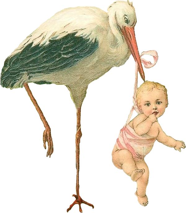 Vintage stork clipart banner Vintage Stork with Baby Girl Scrap | Vintage Scrap | Baby ... banner
