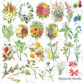 Vintage zinnia clipart picture free library Vintage Botanical Clipart, Antique Digital Flower Illustrations Bundle picture free library