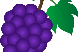 Violet objects clipart picture transparent stock Violet objects clipart 7 » Clipart Station picture transparent stock