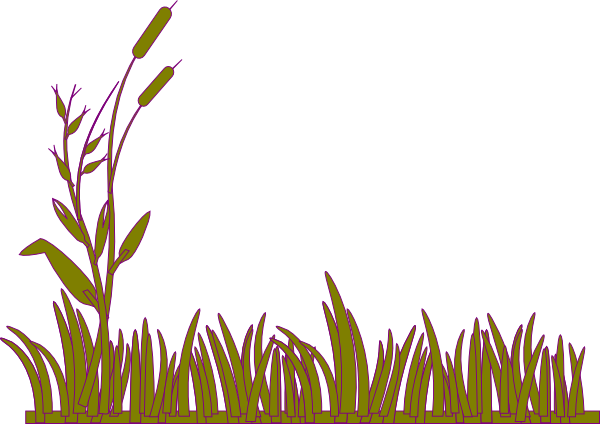 Violet willow clipart