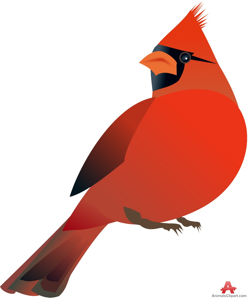 Red cardinal in flight dogwood branch west virginia clipart banner stock Free United States Clip Art by Phillip Martin, Virginia ... banner stock