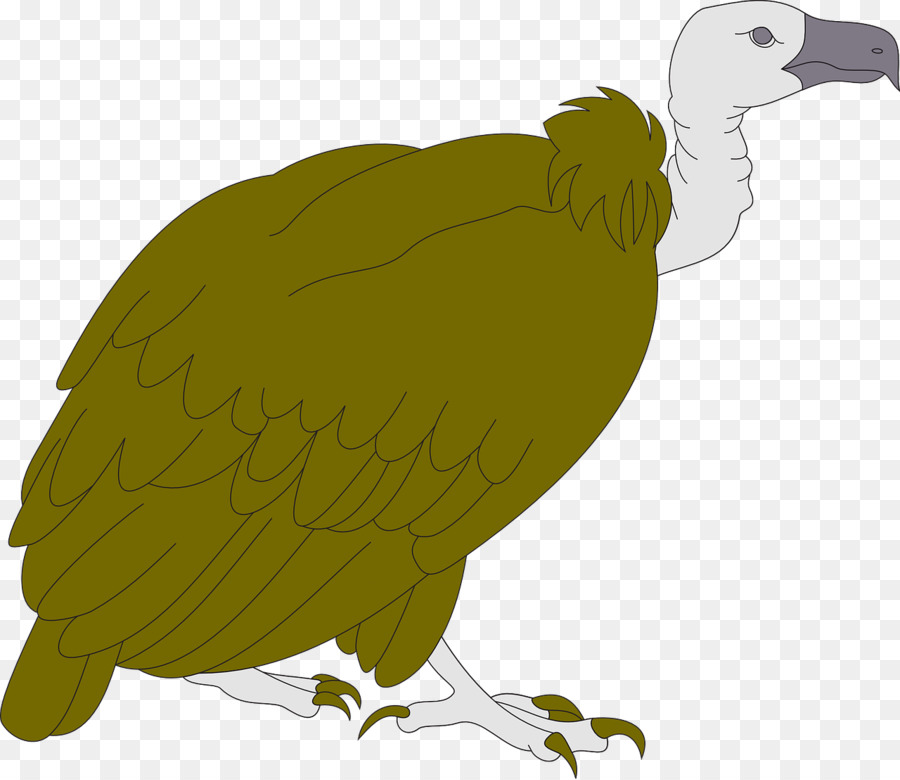 Vulture bird clipart png library download Eagle Drawing png download - 1280*1108 - Free Transparent ... png library download