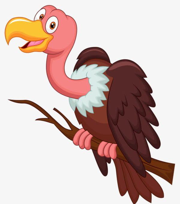 Vulture bird clipart svg freeuse stock Cartoon Vulture PNG, Clipart, Animal, Bird, Cartoon Clipart ... svg freeuse stock