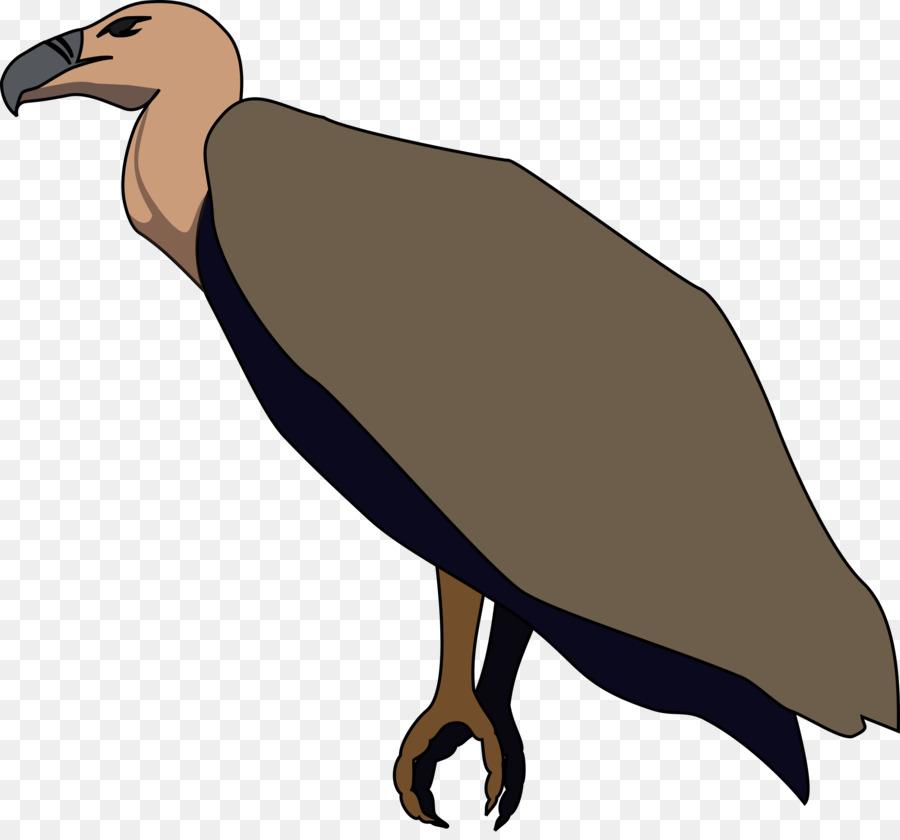 Vulture bird clipart clip art freeuse Turkey Cartoontransparent png image & clipart free download clip art freeuse