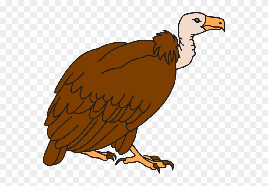Vulture image clipart vector library stock In The Desert Clipart Vulture - Vulture Clipart - Png ... vector library stock