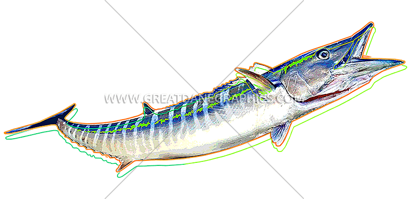 Wahoo fish clipart picture stock Funky Wahoo | Production Ready Artwork for T-Shirt Printing picture stock
