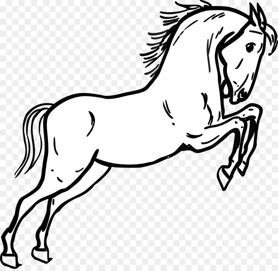 Walk clipart line drawing picture royalty free Animal Cartoon clipart - Drawing, Horse, Head, transparent ... picture royalty free