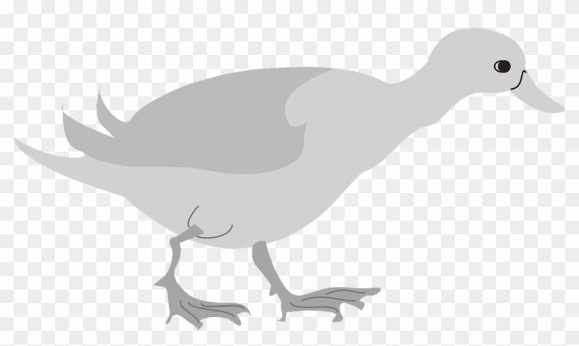 Walking ducks birds clipart graphic transparent download Feet Duck Bird Wings Walking Png Image - Duck, Transparent ... graphic transparent download