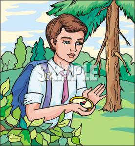 Walking in a swamp clipart royalty free download Royalty Free Clipart Image: A Young Boy Holding a Compass ... royalty free download