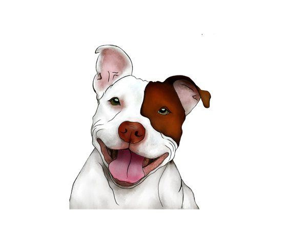Walking pitbulls clipart clip library download Happy Smiling Pitbull Illustration - Man Cave Art - Brown ... clip library download