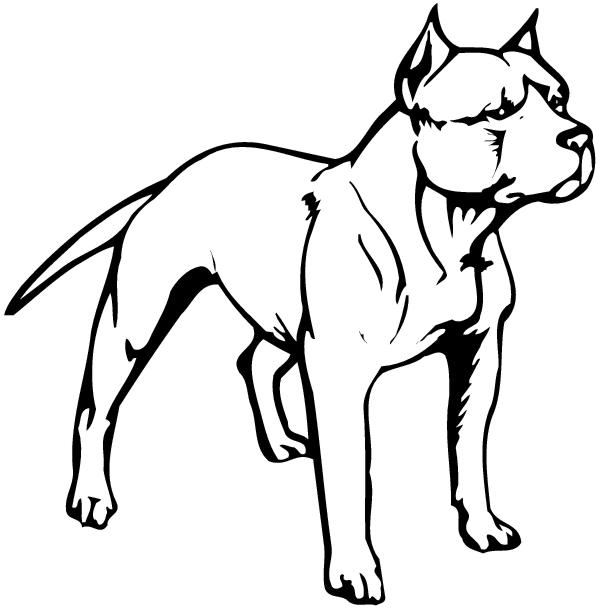 Walking pitbulls clipart vector library stock Collection of Pit clipart | Free download best Pit clipart ... vector library stock