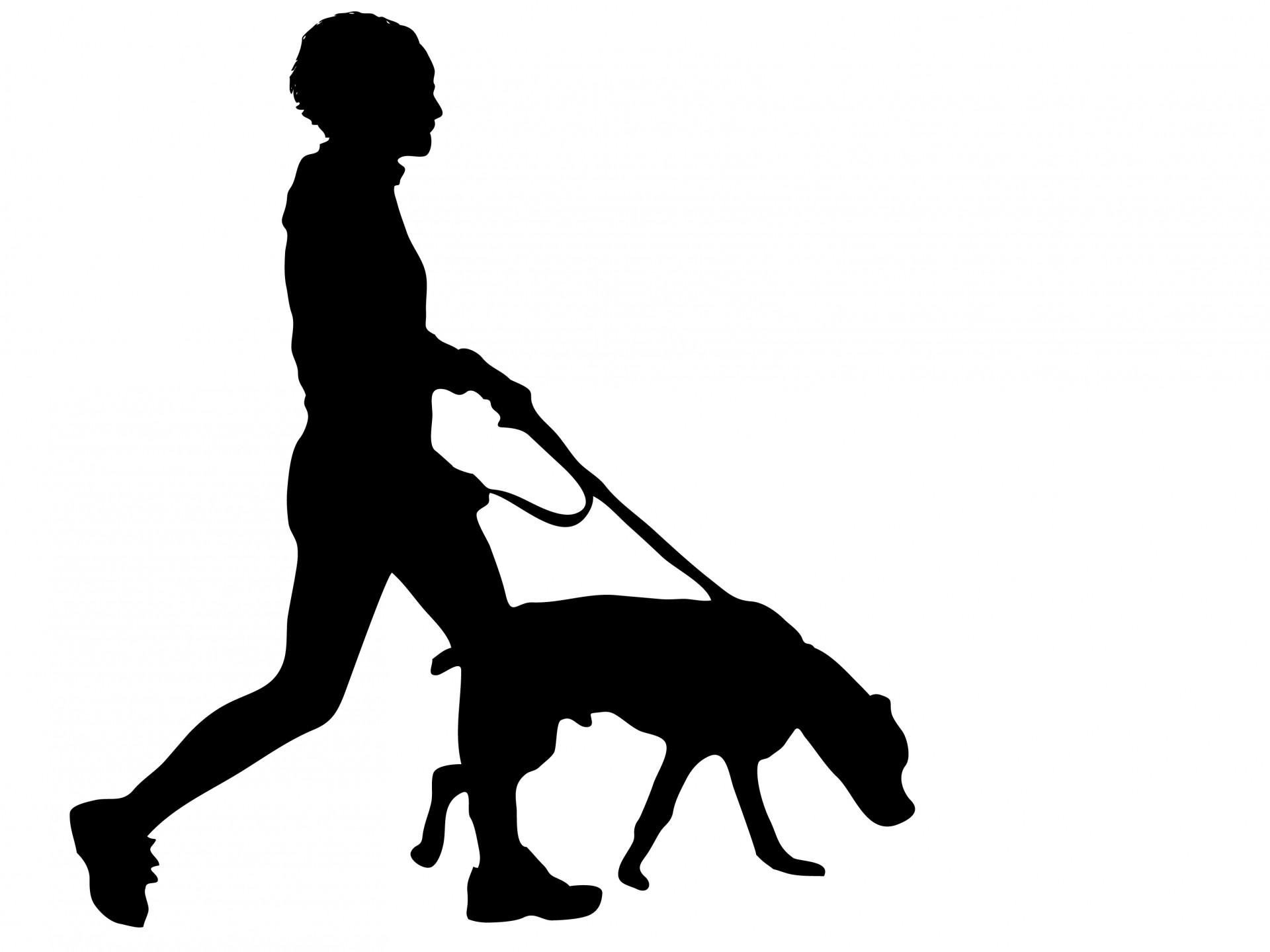 Walking the dog clipart image free stock Dog Walking Clipart & Dog Walking Clip Art Images - ClipartALL.com image free stock