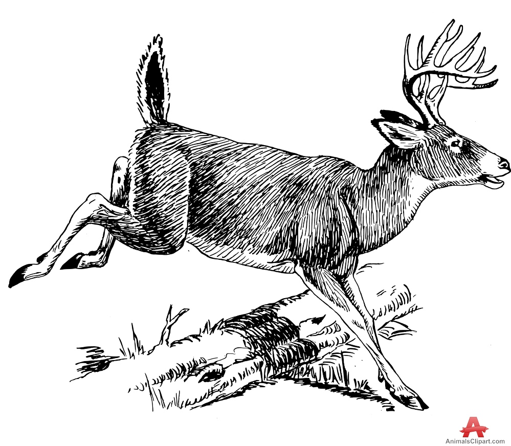 Walking through the forest black and white clipart clip library stock Free Walking Deer Cliparts, Download Free Clip Art, Free ... clip library stock