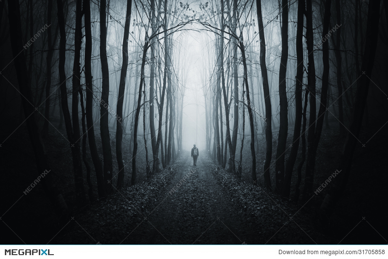 Walking through the forest black and white clipart clipart free stock Best Man walking though a path in the forest Wallpapers (8 + ... clipart free stock