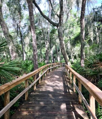 Walking trail clean up clipart jpg free library Guide to Great Family Hiking Trails in Jacksonville jpg free library