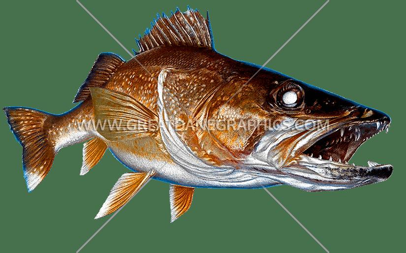 Walleye fish clipart jpg freeuse Walleye   Production Ready Artwork for T-Shirt Printing jpg freeuse