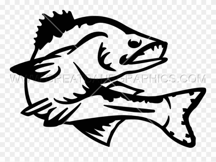 Walleye outline clipart vector Walleye Vector Clipart Black And White Stock - Walleye Line ... vector