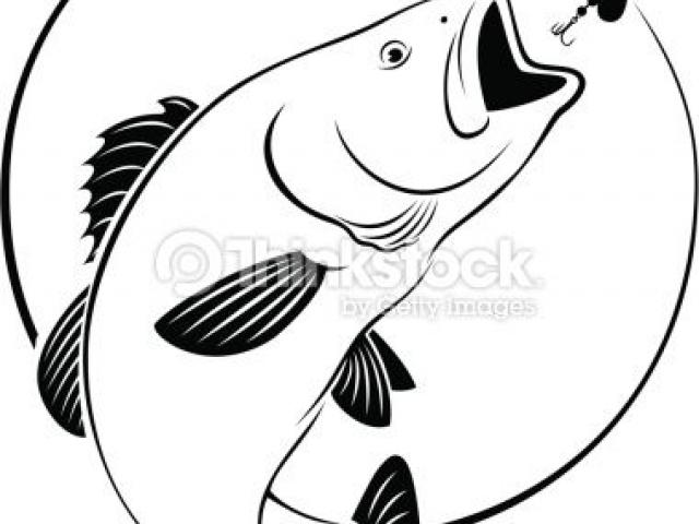 Walleye outline clipart image transparent stock Walleye Outline Cliparts 3 - 380 X 450 - Making-The-Web.com image transparent stock