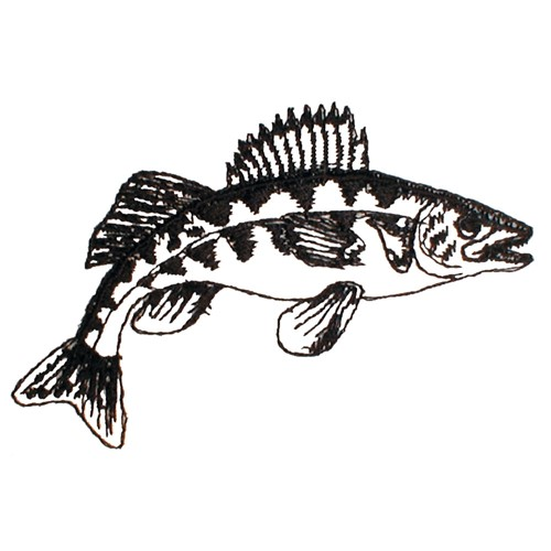 Walleye outline clipart graphic free stock Walleye Outline Embroidery Design graphic free stock