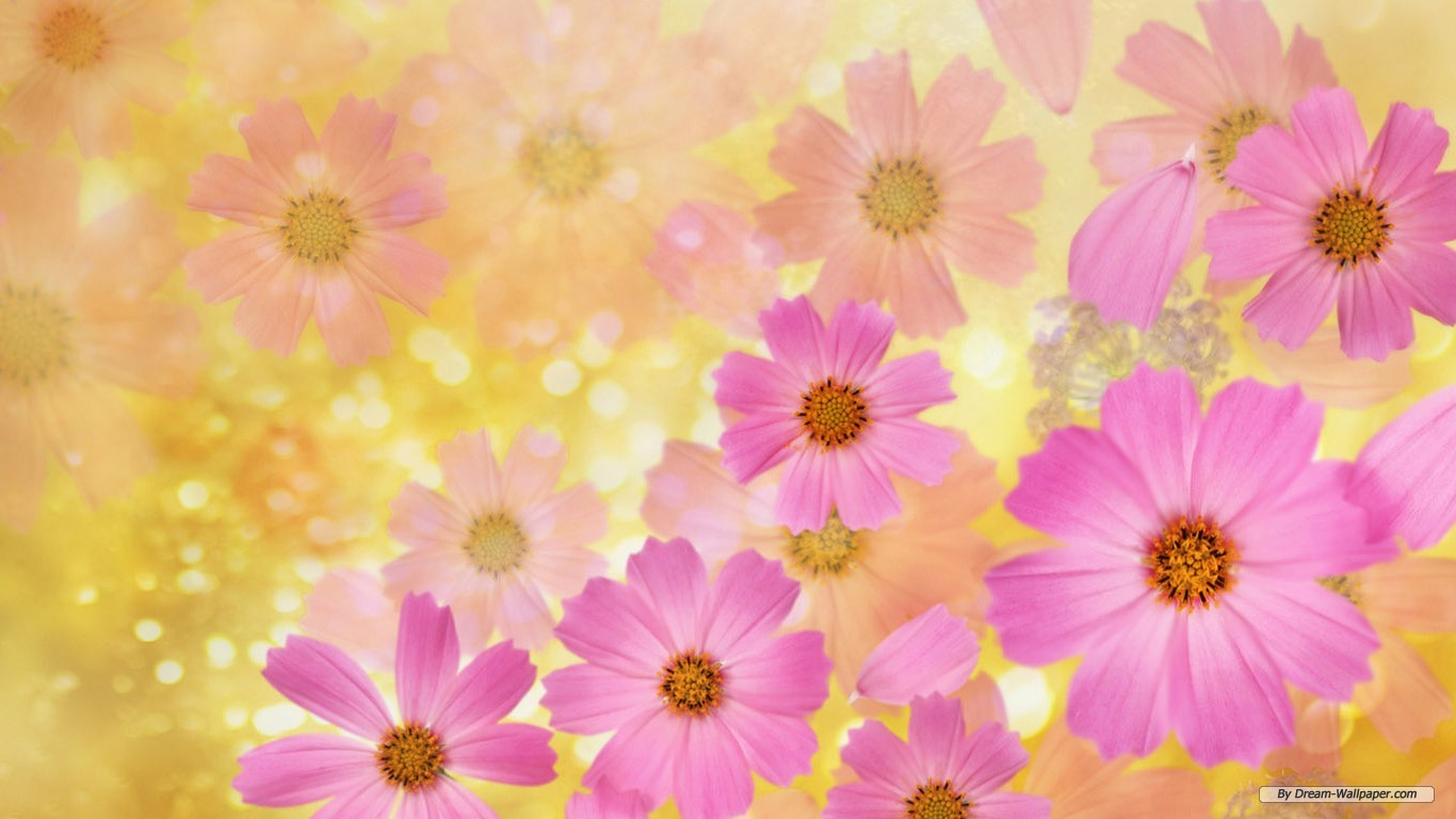 Wallpaper flowers free vector free stock Free Wallpaper - Free Flower wallpaper - Cg Flowers wallpaper ... vector free stock