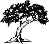 Walnut tree clipart clipart clip art Clip Art Black Walnut Clipart - Clipart Kid clip art