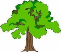 Walnut tree clipart clipart vector transparent download City of San Dimas - City News Archive vector transparent download