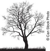 Walnut tree clipart clipart picture Walnut tree Clipart and Stock Illustrations. 951 Walnut tree ... picture