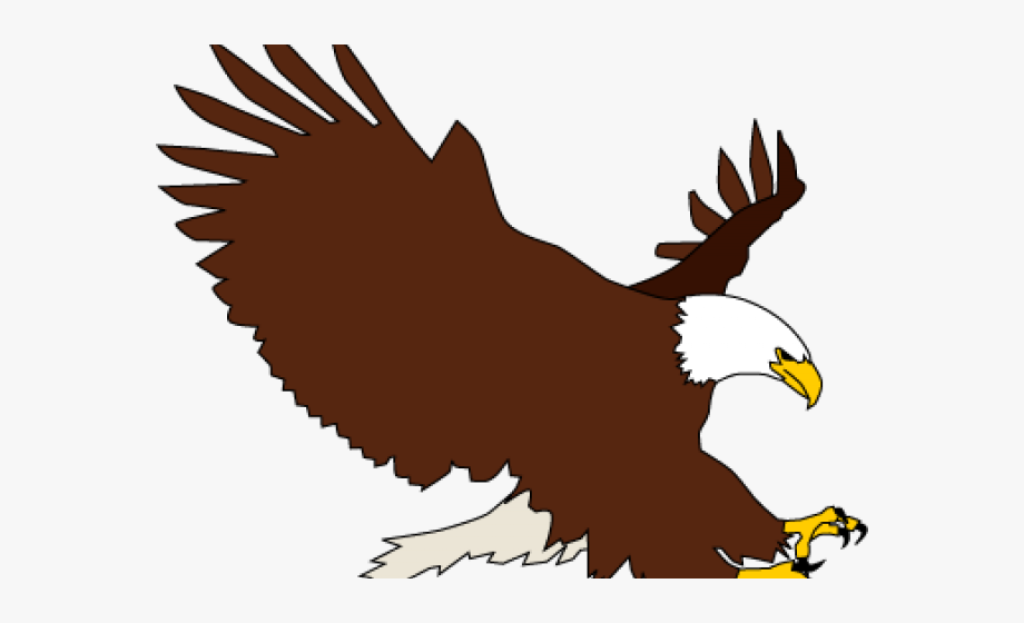 War eagle clipart jpg transparent stock Bald Eagle Clipart Colored - Transparent Background Eagle ... jpg transparent stock