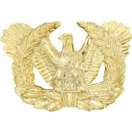 Warrant officer eagle rising clipart jpg freeuse stock Warrant Officer Eagle Rising Branch Insignia jpg freeuse stock
