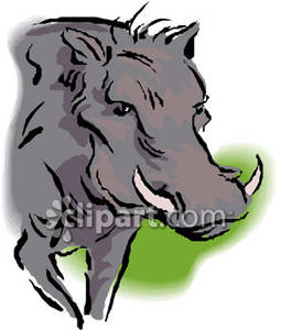 Warthog face clipart vector library library Face of a Warthog - Royalty Free Clipart Picture vector library library