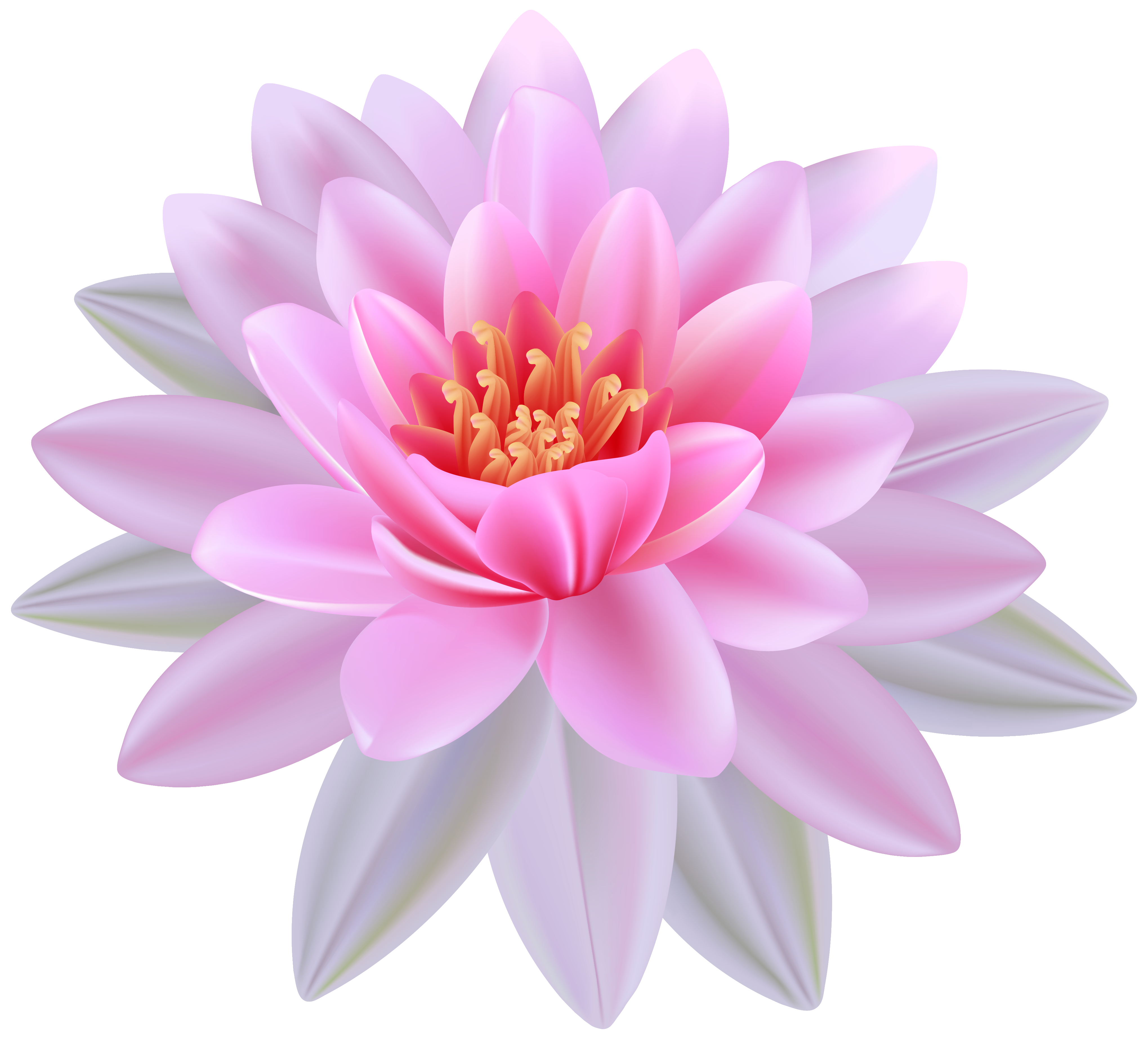 Water flower clipart graphic library Pink Water Lily PNG Clipart Image | Gallery Yopriceville - High ... graphic library