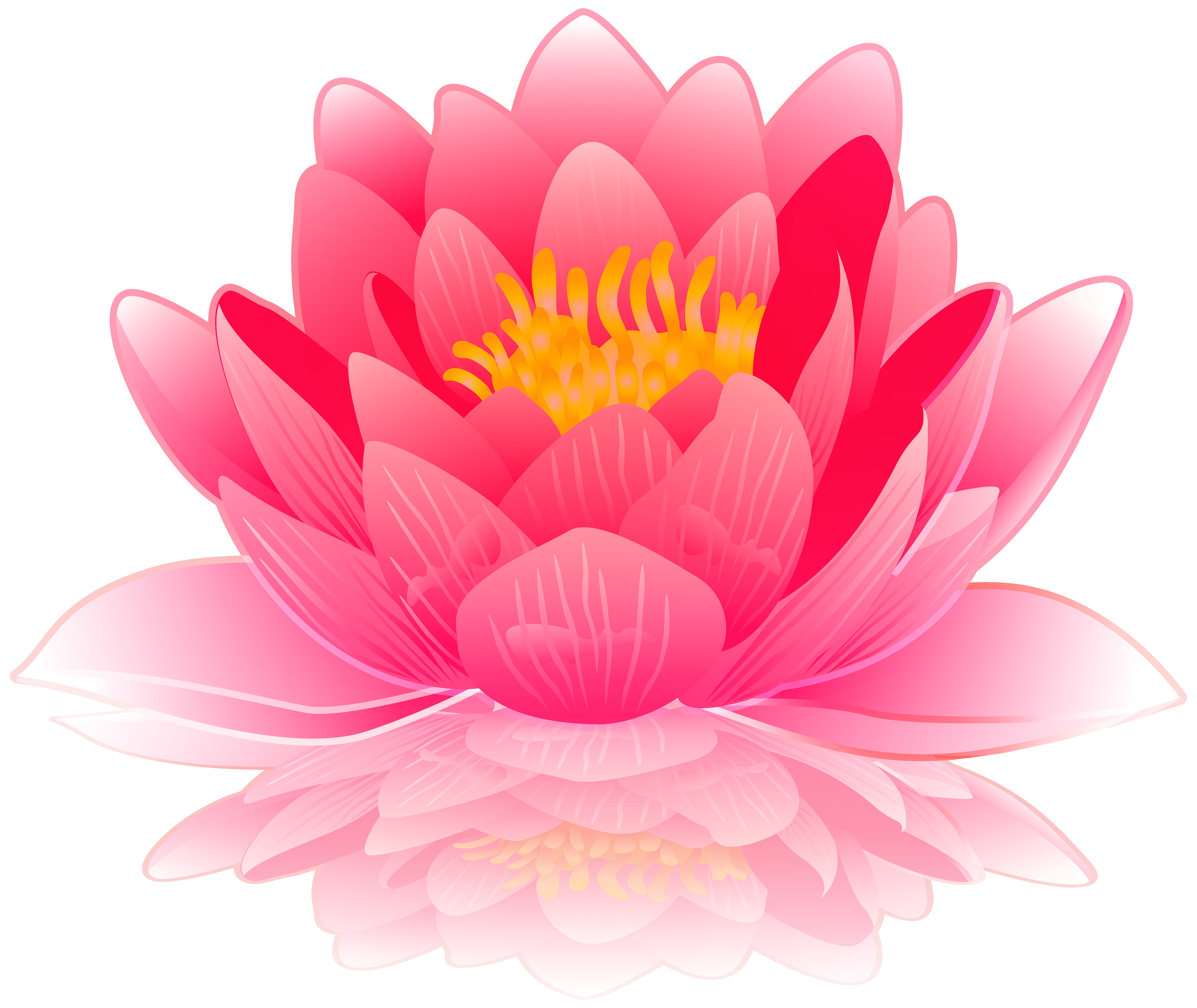 Water lily flower clipart black and white download Pink Water Lily PNG Clip Art Image | Gallery Yopriceville - High ... black and white download