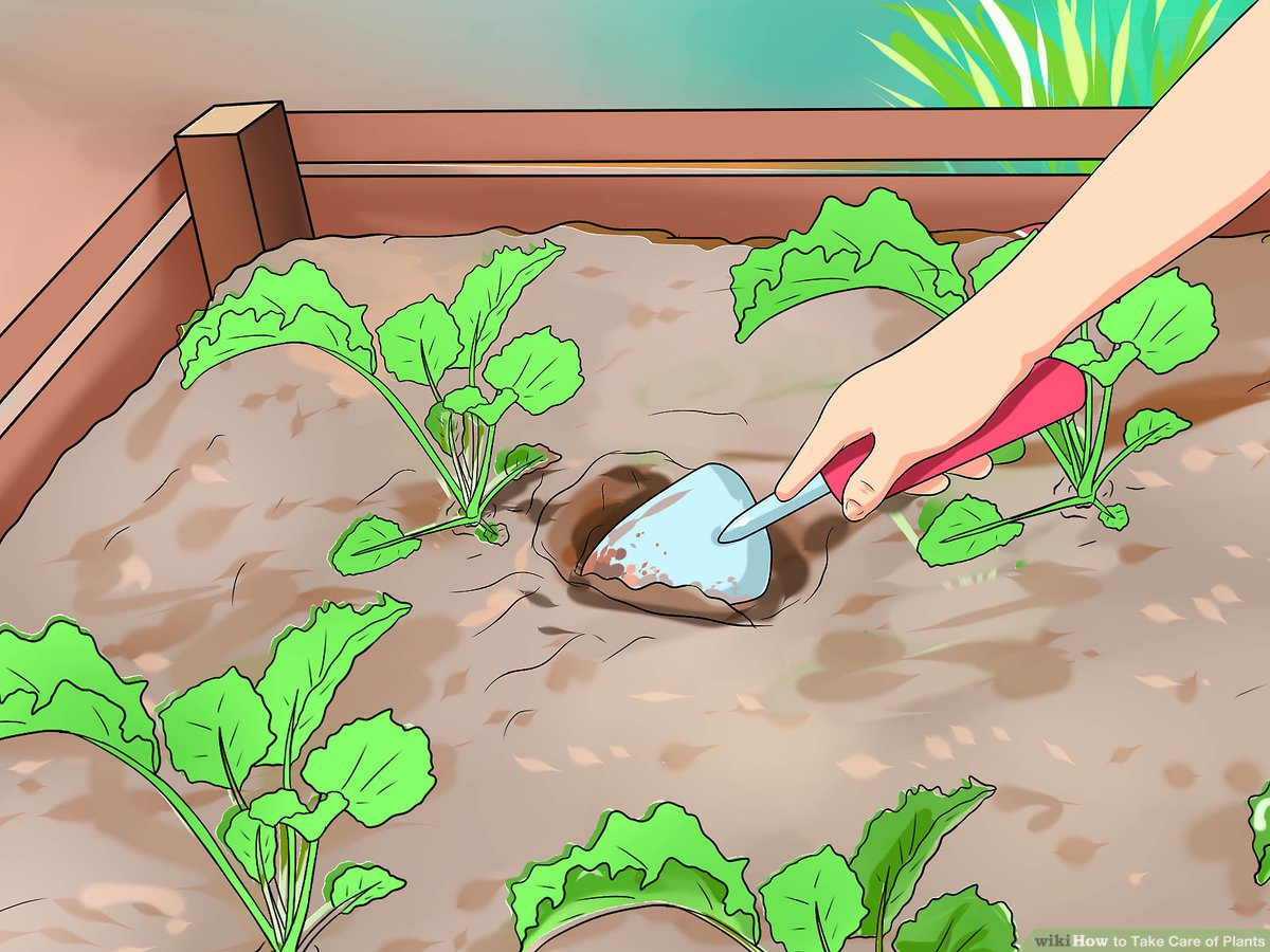 Water clipart for nursery plant vector library stock 3 Ways to Take Care of Plants - wikiHow vector library stock