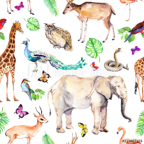 Water color zoo animals clipart jpg freeuse Wild animals and birds - zoo, wildlife - elephant, giraffe ... jpg freeuse