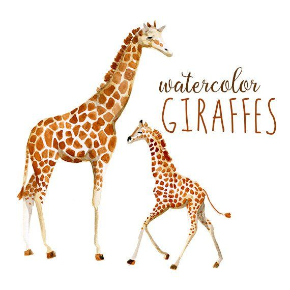 Water color zoo animals clipart svg free download Watercolor Giraffes, Zoo Animals Watercolor Giraffe Clip Art ... svg free download