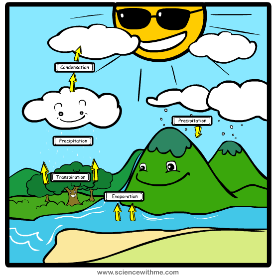 Water cycle clip art free download what is water cycle of 7th class - 1878906 | Meritnation.com free download