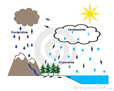 Water cycle clip art clipart royalty free library Condensation water cycle clipart - ClipartFest clipart royalty free library