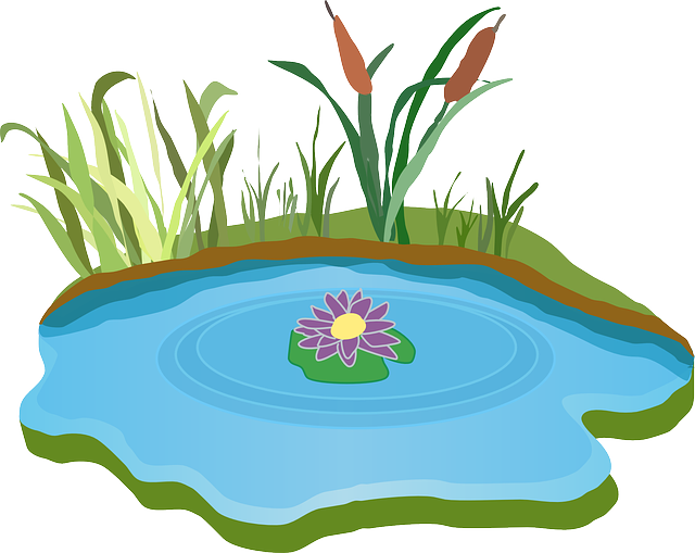 Fish pound clipart banner library stock Free Image on Pixabay - Pond, Water, Outdoor, Grass | Pinterest ... banner library stock