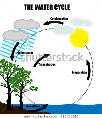 Water cycle clipart frame clipart freeuse Water Cycle Stock Images, Royalty-Free Images & Vectors | Shutterstock clipart freeuse