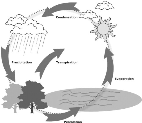 Water cycle clipart in black and white freeuse download Water cycle algorithm – A novel metaheuristic optimization ... freeuse download