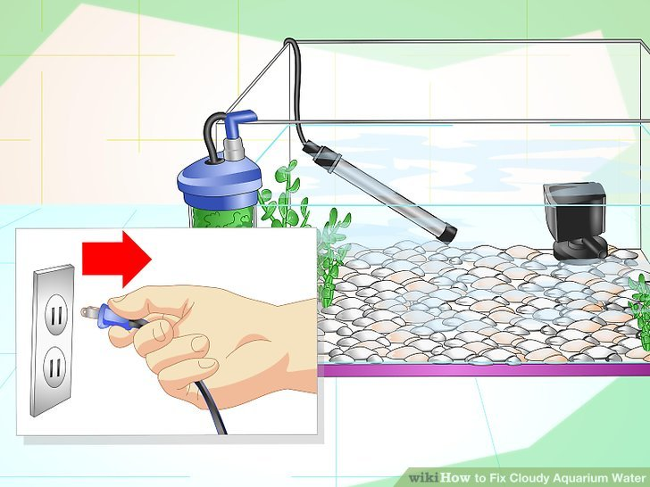 Water filled aquarium clipart graphic transparent download How to Fix Cloudy Aquarium Water (with Pictures) - wikiHow graphic transparent download