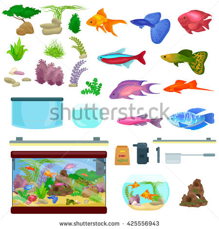 Water filled aquarium clipart clipart royalty free download Aquarium Tank Stock Images, Royalty-Free Images & Vectors ... clipart royalty free download