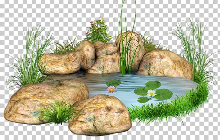 Water landscape clipart svg freeuse Stone Body Of Water Landscape Design Pond PNG, Clipart ... svg freeuse